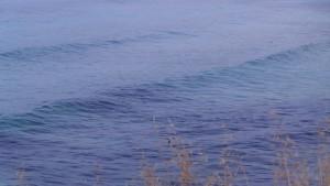 fontane-bianche (10)