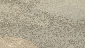 fontane-bianche (52)